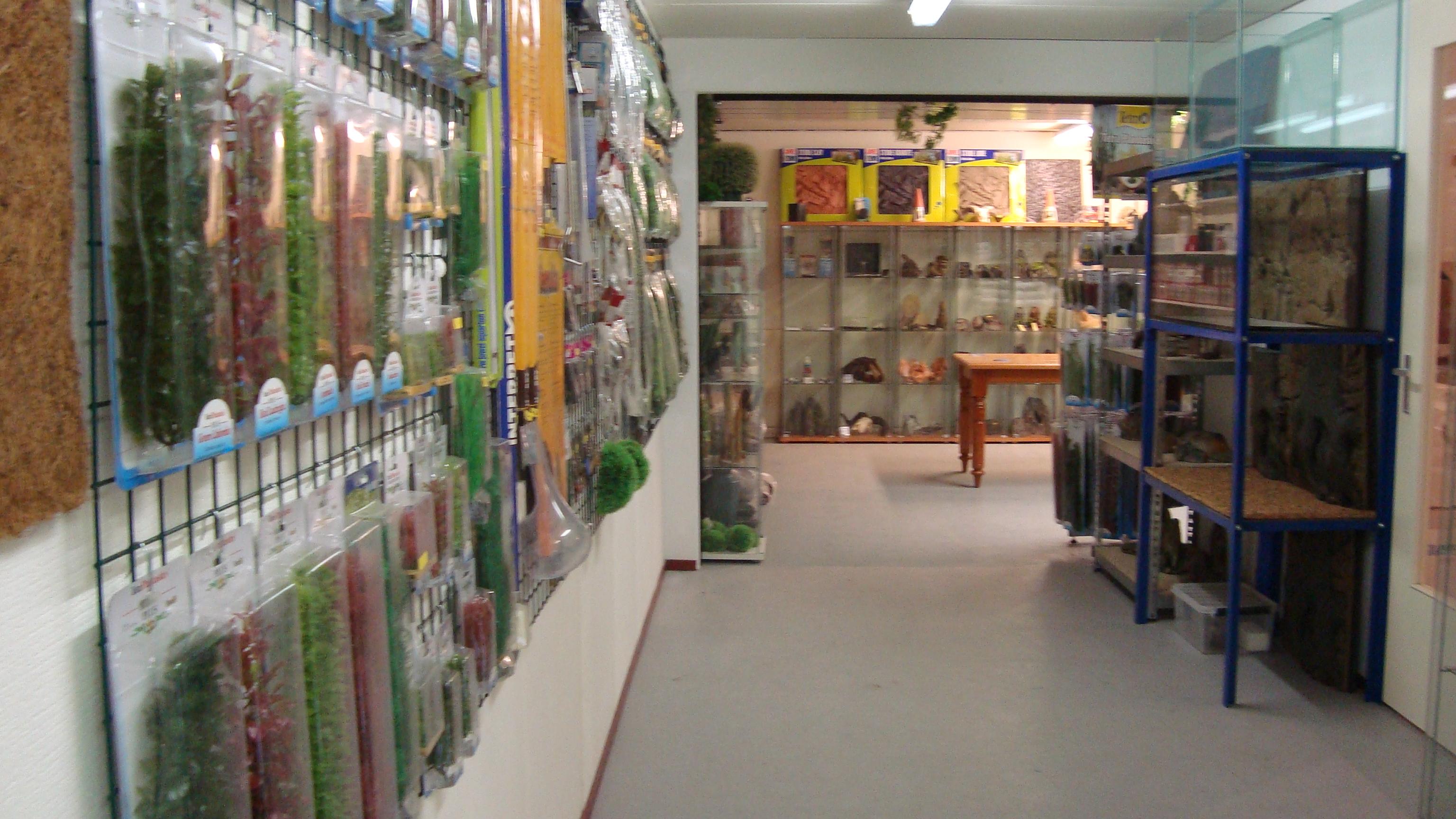 Terraglas showroom 1