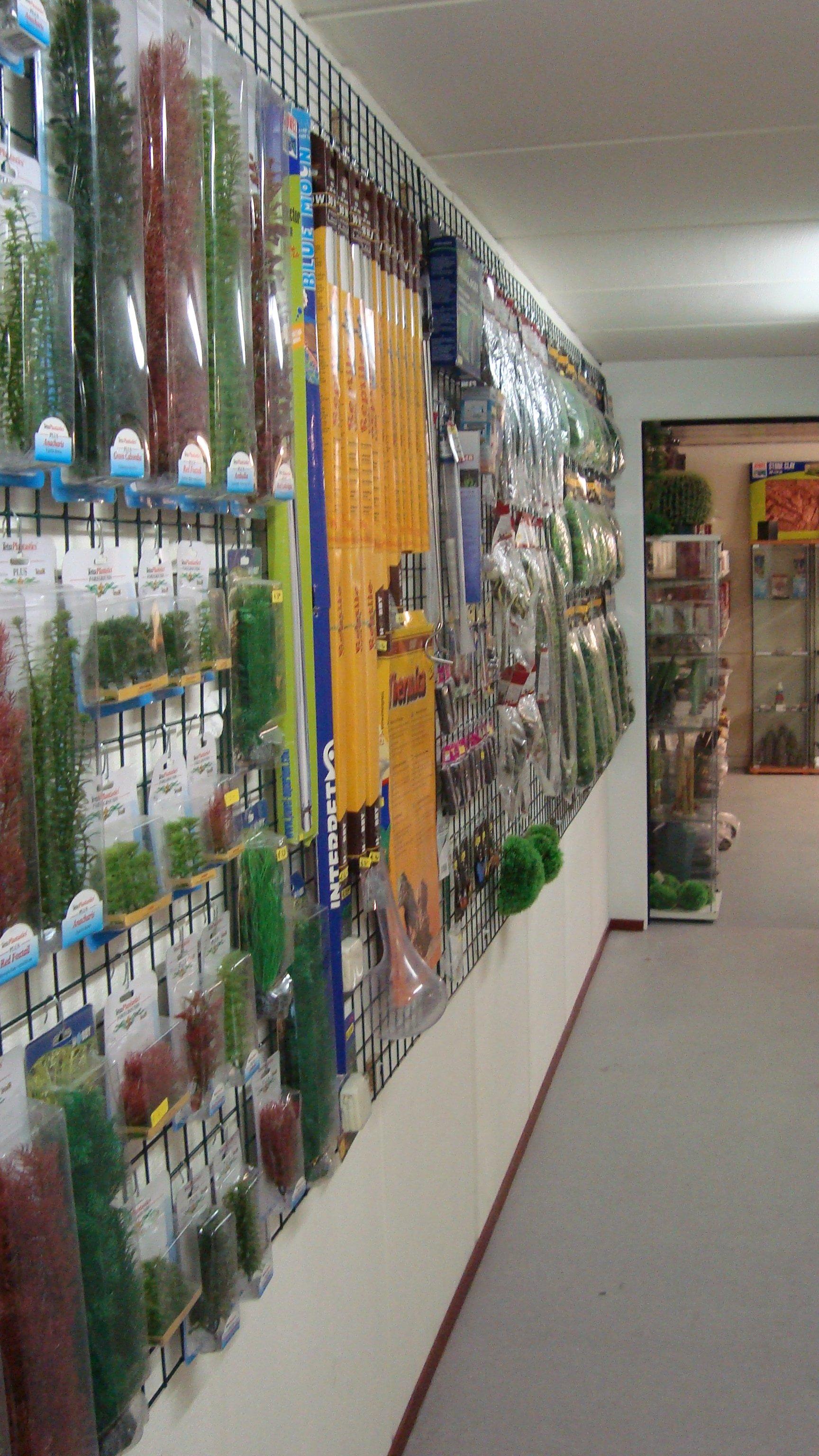 Terraglas showroom 2