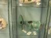 Terraglas showroom 15